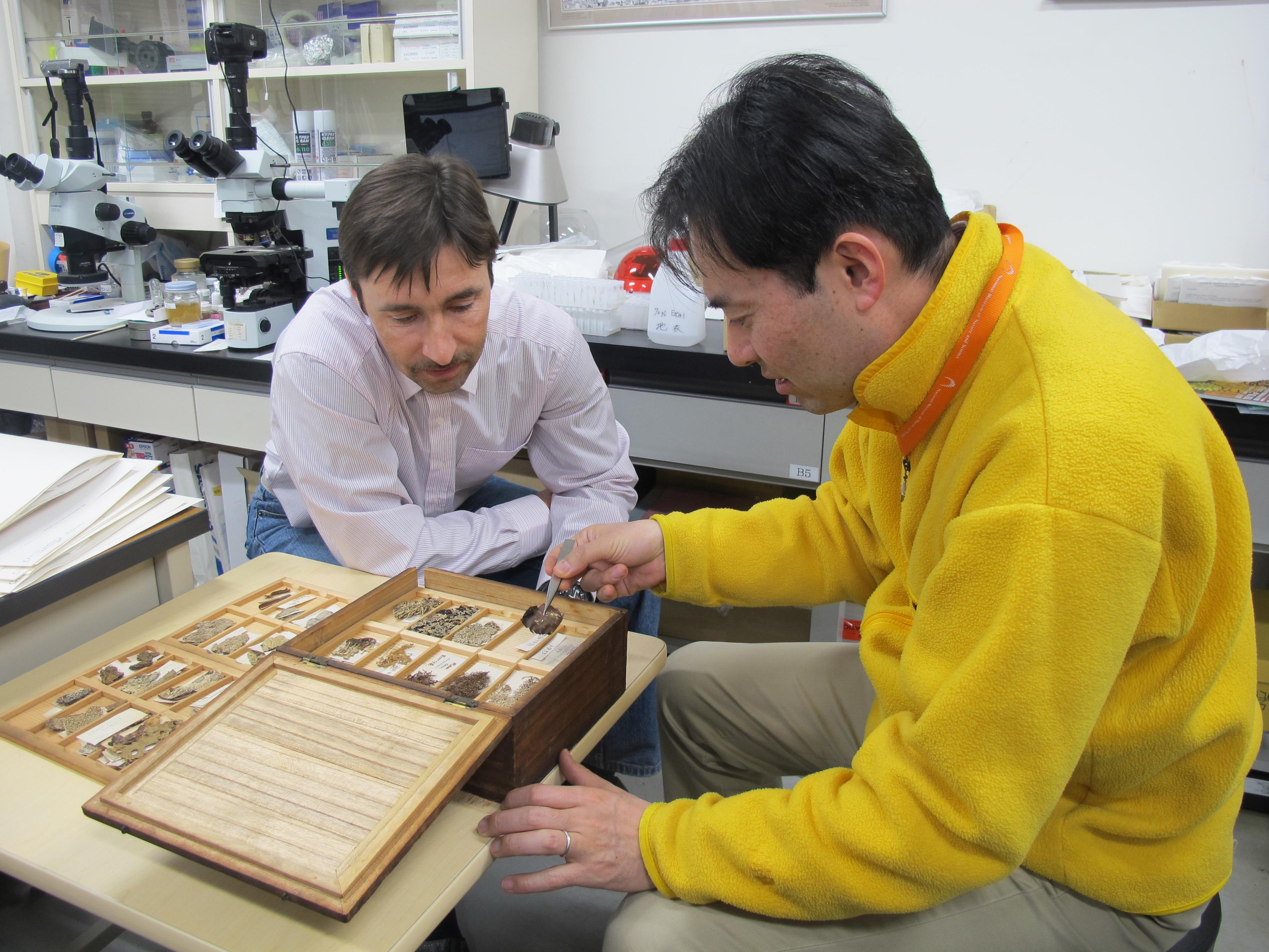 Проект АлтГУ получил финансовую поддержку РФФИ и Японского общества продвижения науки