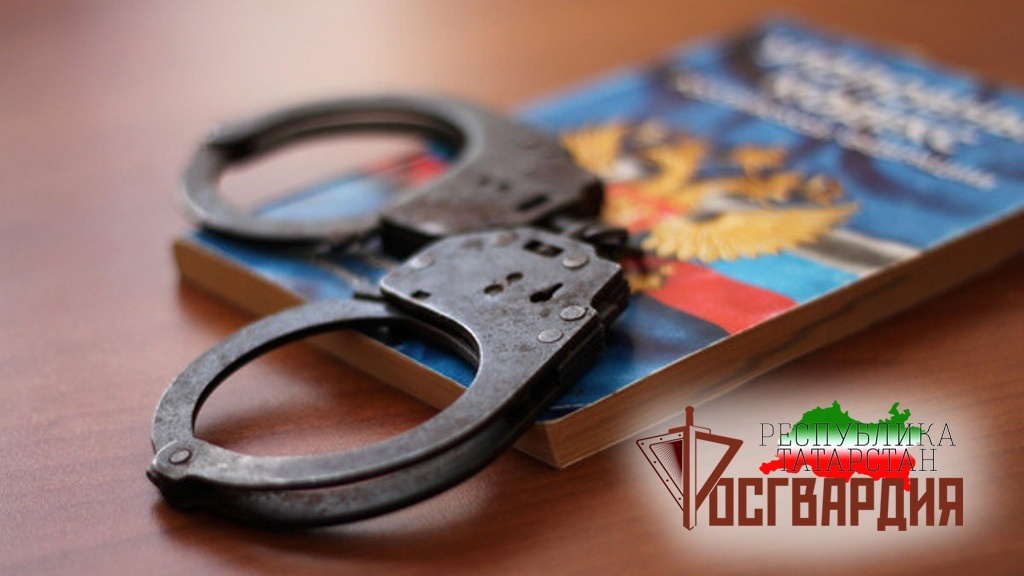 В Кукморском районе сотрудники ОВО Росгвардии задержали подозреваемого в краже из магазина