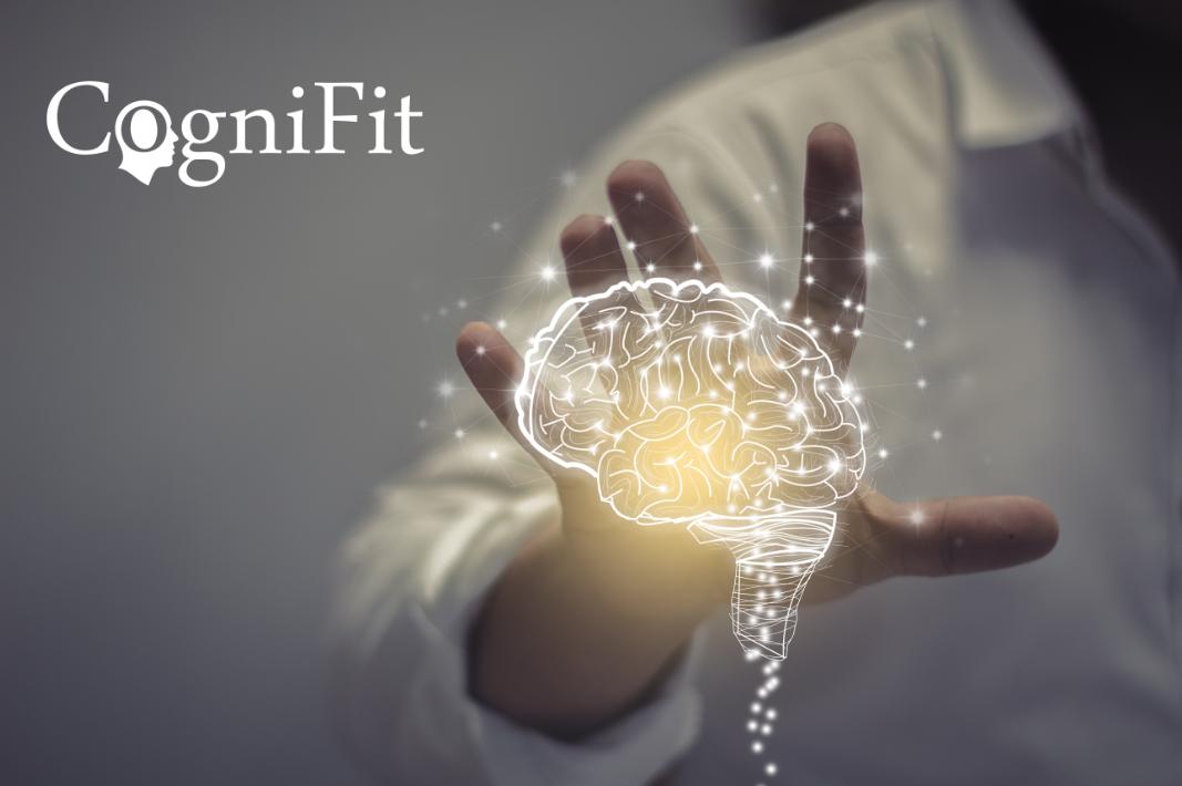 Учёные: тренировка мозга улучшает рабочую память и другие исполнительные функции