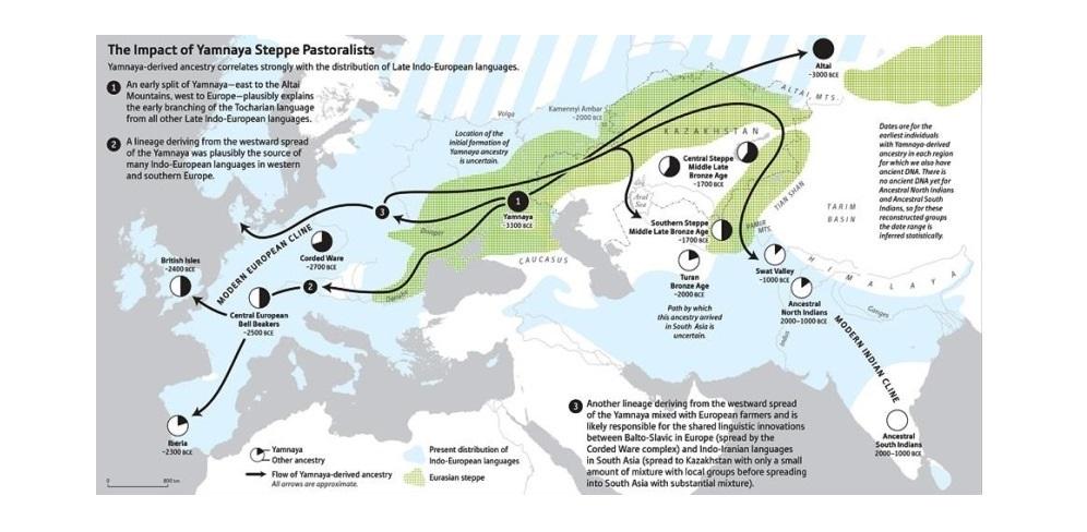 Учёные ЧелГУ по ДНК древнего человека выяснили сенсационные подробности происхождения высших сословий Индии