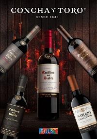 Группа компаний «Руст» и Viña Concha y Toro объявляют об устойчивом росте продаж вин Concha y Toro на стратегических рынках России и Польши