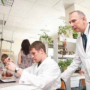 Учёные НИУ «БелГУ» создали и запатентовали наноразмерный гидроксиапатит, близкий к природному веществу