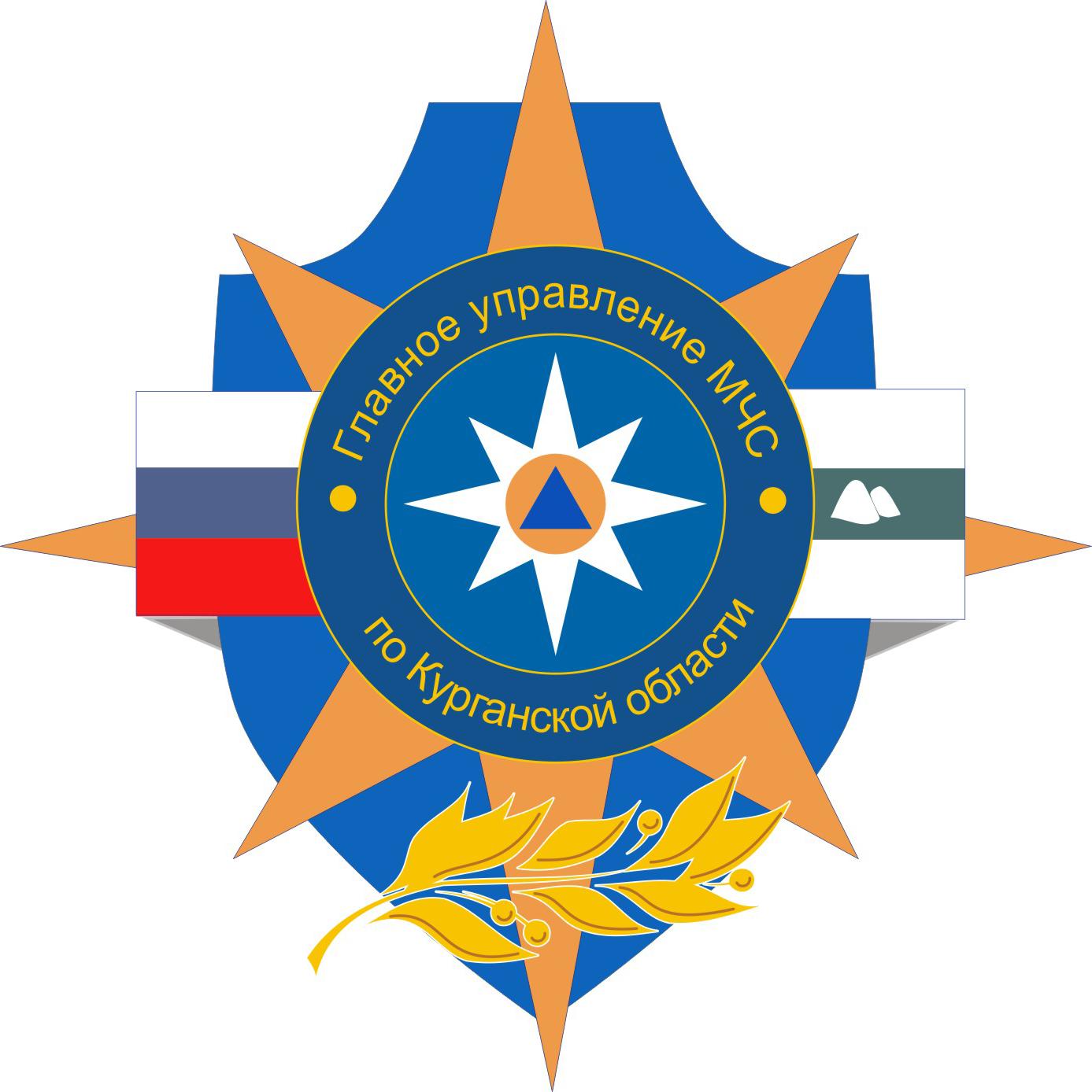 ГУ МЧС России по Курганской области