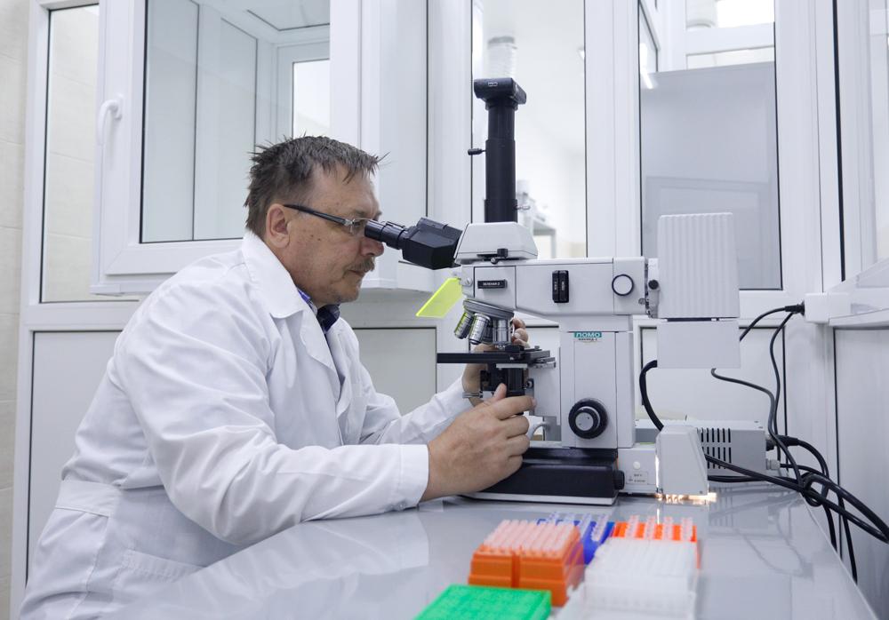 Учёные НИУ «БелГУ» установили влияние наноматериалов на ДНК живых организмов