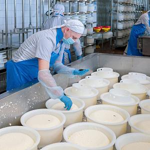 Заместитель директора ЗАО «Сернурский сырзавод» Тарас Кожанов: «...сначала человек становится счастливым, а уже потом продуктивным!»